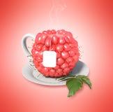 Taza de té de la frambuesa Foto de archivo