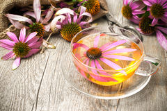 Taza de té del echinacea en la tabla de madera Imagen de archivo libre de regalías