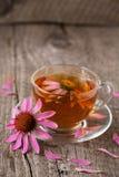 Taza de té del echinacea en la tabla de madera vieja Imagen de archivo libre de regalías