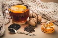 Taza de té del invierno Fotografía de archivo