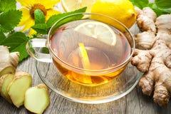Taza de té del jengibre Imagenes de archivo