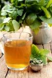 Taza de té del toronjil Foto de archivo