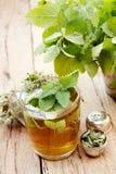 Taza de té del toronjil Fotos de archivo libres de regalías