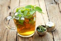 Taza de té del toronjil Imagen de archivo libre de regalías