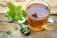 Taza de té del toronjil Imagen de archivo