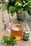 Taza de té del toronjil Imágenes de archivo libres de regalías
