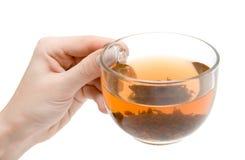 Taza de té a disposición Fotografía de archivo libre de regalías