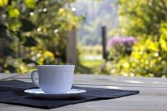 Taza de té en el jardín Foto de archivo libre de regalías