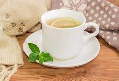 Taza de té en fondo de manoplas y de la bufanda de lana Imágenes de archivo libres de regalías