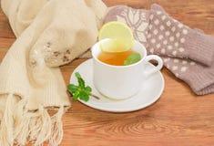 Taza de té en fondo de manoplas y de la bufanda de lana Fotografía de archivo