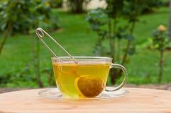 Taza de té en jardín verde Imagen de archivo