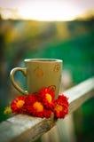 Taza de té en la puesta del sol Fotografía de archivo
