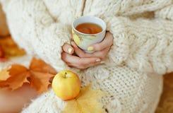 Taza de té en las manos de una muchacha en un suéter blanco Imagen de archivo