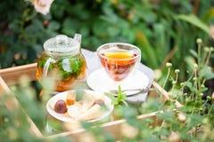 Taza de té en un jardín fotografía de archivo libre de regalías