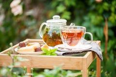 Taza de té en un jardín imágenes de archivo libres de regalías