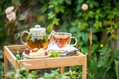 Taza de té en un jardín fotografía de archivo