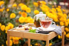 Taza de té en un jardín foto de archivo libre de regalías
