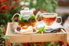 Taza de té en un jardín imagen de archivo