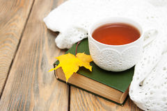 Taza de té en un libro viejo Fotos de archivo libres de regalías