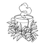 Taza de té exhausta de la mano con el vapor, bolsita de té, ejemplo del vector de las hojas de té ilustración del vector
