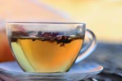 Taza de té herbario Imagen de archivo libre de regalías