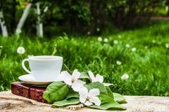 Taza de té, de libro y de rama calientes de un manzano Té en el jardín Fotos de archivo