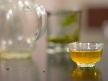 Taza de té llenada de infusión de hierbas Fotos de archivo libres de regalías
