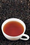 Taza de té negro en las hojas Fotografía de archivo libre de regalías