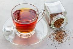 Taza de té rojo de los rooibos herbarios sanos en la taza de cristal Foto de archivo libre de regalías