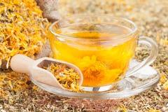 Taza de té sano foto de archivo libre de regalías