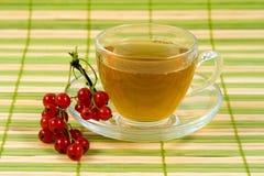 Taza de té transparente con té y la pasa roja Imágenes de archivo libres de regalías