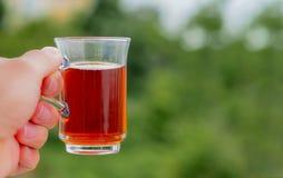 Taza de té turca de mano y fondo verde fotos de archivo