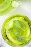 Taza de té verde de la menta sana fotografía de archivo libre de regalías