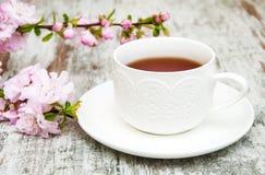 Taza de té y de flor de Sakura Fotografía de archivo libre de regalías