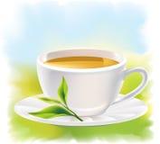 Taza de té y de una hoja verde natural. Landsca asoleado Fotos de archivo