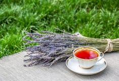 Taza de té y de lavanda en el jardín Té del verano Té útil Imágenes de archivo libres de regalías