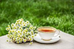 Taza de té y de manzanillas Manzanilla fresca y té caliente Té útil en el jardín Imagen de archivo