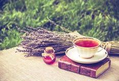 Taza de té y de poción de amor Té útil Lavanda y té Té con el extracto de la lavanda Imágenes de archivo libres de regalías