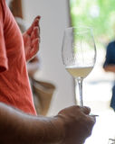 Taza de vino Fotografía de archivo libre de regalías