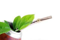 Taza del compañero con las hojas del verde del yerba fotografía de archivo libre de regalías