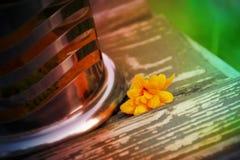 Taza del flor del Calendula y de cristal imágenes de archivo libres de regalías