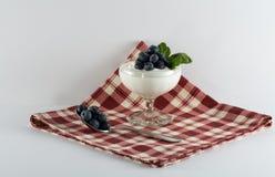 Taza del postre del yogur con los arándanos en servilleta roja de la tela escocesa imagen de archivo