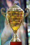 Taza del trofeo fotografía de archivo libre de regalías