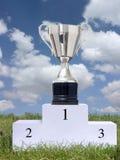 Taza del trofeo Foto de archivo libre de regalías