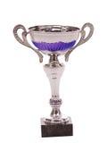 Taza del trofeo fotografía de archivo