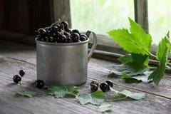 Taza del vintage de bayas de la grosella negra en la tabla de madera rústica Fotografía de archivo libre de regalías
