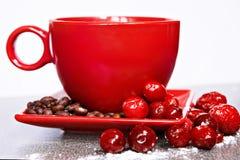 Taza roja en un platillo con los arándanos Imagenes de archivo