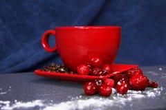 Taza roja en un platillo con los arándanos Foto de archivo