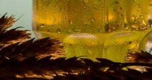 Taza tórrida de cerveza almacen de video