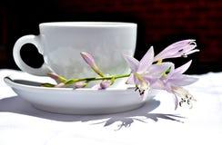 Taza y flores de café Imágenes de archivo libres de regalías
